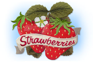 Select taste of summer machine embroidery designs are on sale for only $1.00 each!