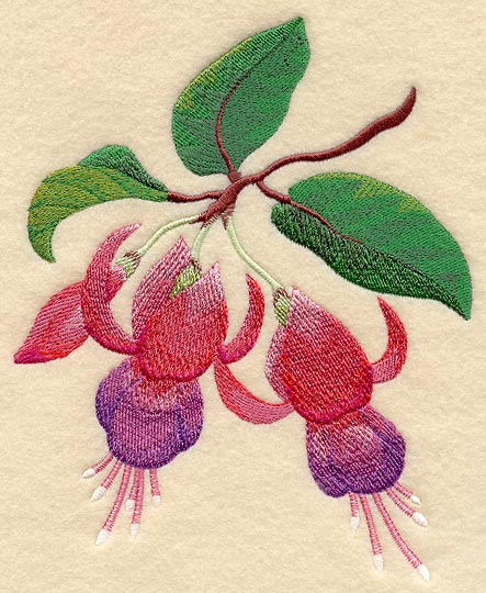 Machine Embroidery Designs At Embroidery Library  Fuchsia