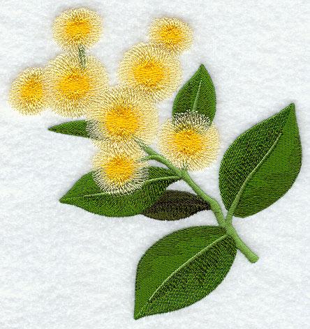 Free Machine Embroidery Designs Australian Flowers