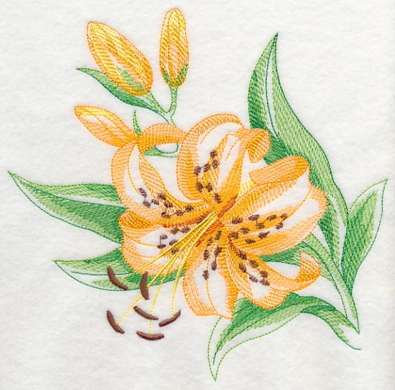 Machine embroidery designs at embroidery library - Tiger lily hair salon ...