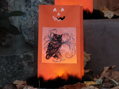 Free project instructions to create an illuminating decor piece.