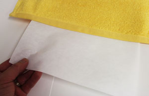 Free project instructions to embroider a towel border with an applique animal design.