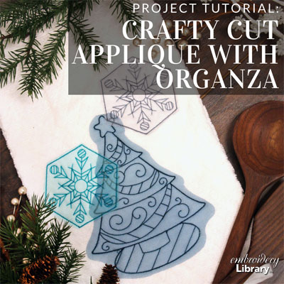 Crafty Cut Applique with Organza