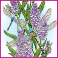 Dreaming of Dragonflies machine embroidery design.