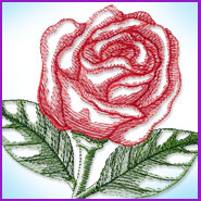 Sheer Rose (cardstock) machine embroidery design.