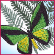 Butterfly and fern machine embroidery design.