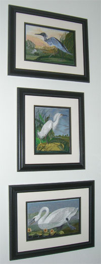 Based on the work of John James Audubon, three framed embroidery designs look stunning.