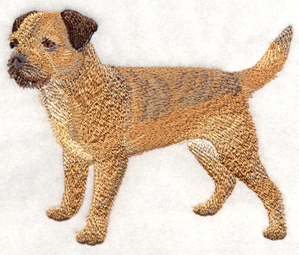 Border Terrier Embroidery Design Picture  Dog Breeds Picture