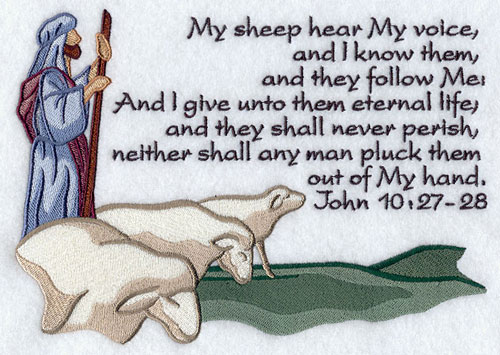 my sheep hear my voice and they follow me