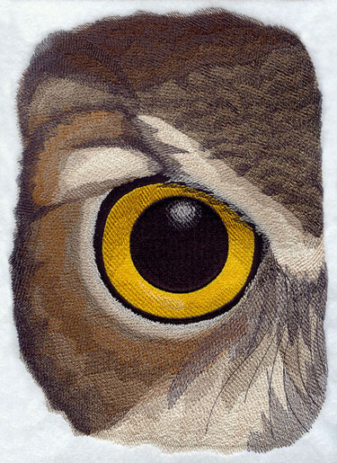 Richly detailed owl eye close up machine embroidery design.