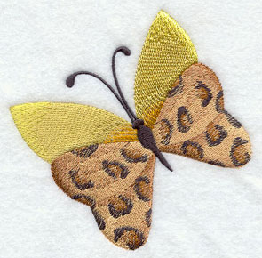 A butterfly with animal print leopard spots.