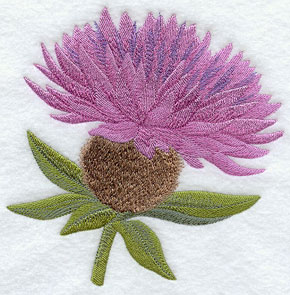 Common knapweed (Irish wildflower) machine embroidery design.