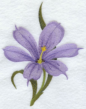Blue-eyed grass (Irish wildflower) machine embroidery design.