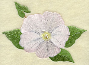Field bindweed (Irish wildflower) machine embroidery design.