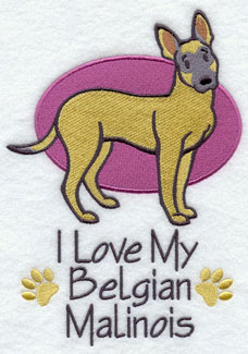 """I Love My Belgian Mailnois"" dog machine embroidery design."