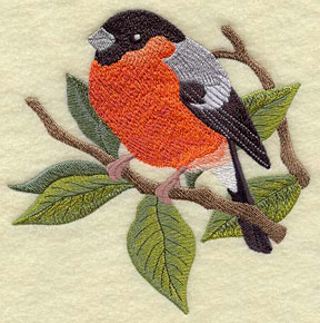 A bullfinch on a walnut branch machine embroidery design.