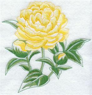 A blooming peony machine embroidery design.