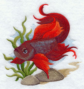 A fighting fish machine embroidery design.