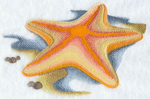 A starfish machine embroidery design.