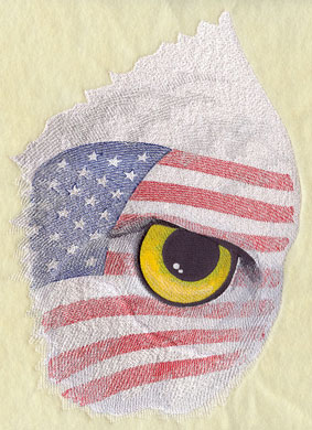 A dramatic and detailed eye of the bald eagle, with a United States flag framed around the eye.