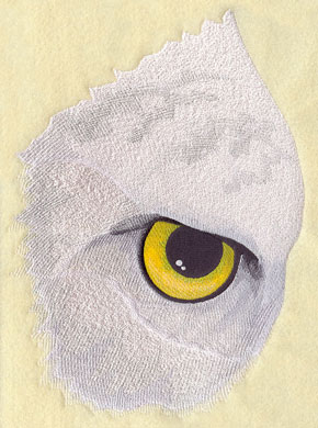 A closeup of an eagle's eye machine embroidery design.