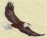 An American bald eagle machine embroidery design.