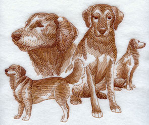 A sketchbook style medley or collage of Golden Retriever dogs.