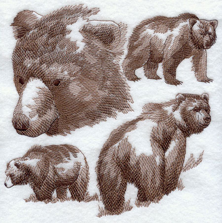 Sketchy-style wildlife medley of a bear.