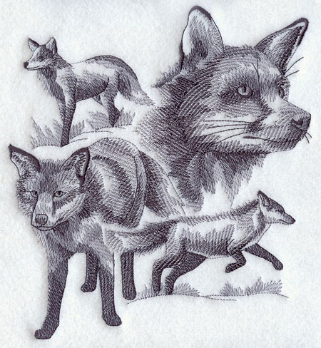 Sketchy-style wildlife medley of a fox.