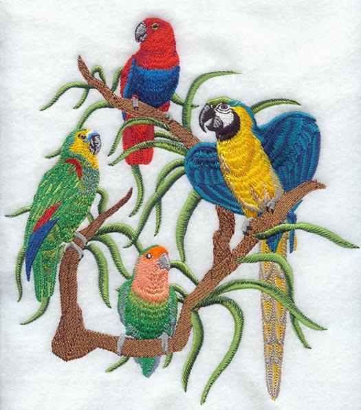 Embroidery Birds Designs Ausbeta