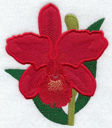 Applique Cattleya Orchid