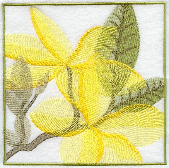 Machine embroidery designs at embroidery library embroidery library frangipani soft shadow square dt1010fo
