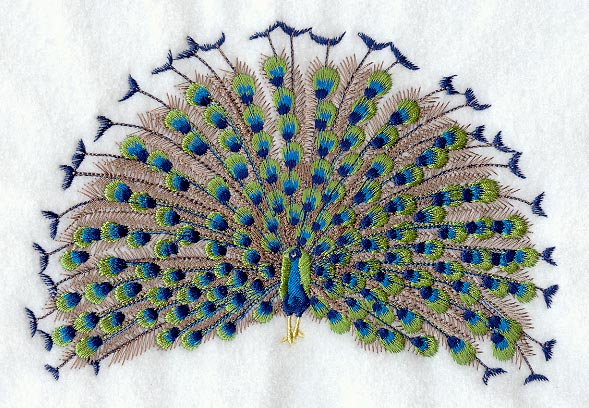 Peacock Feather Machine Embroidery Design